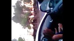 Ma chienne et le routier